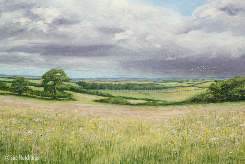 sunshine and showers dorset landcape by sue hutchings at dorset studio